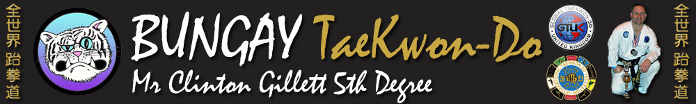 Learn the martial art of Taekwondo at Bungay TaeKwonDo Club, GTUK-East, Norfolk, Suffolk, Waveney